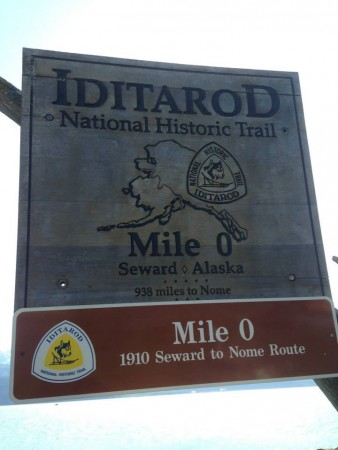 The dog team might run in the annual race along this historic trail in the middle of freezing conditions and snow.